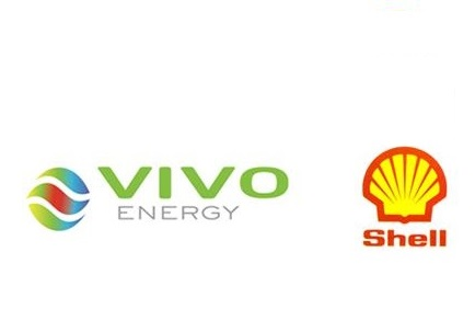 VIVO SHELL LOGO.jpg